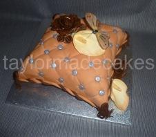 Chocolate cushion