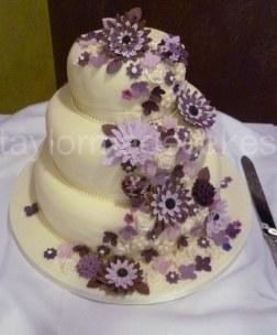 purple gerberas