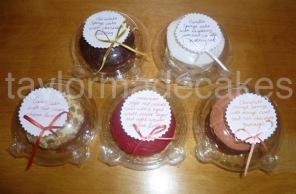 Taster cakes